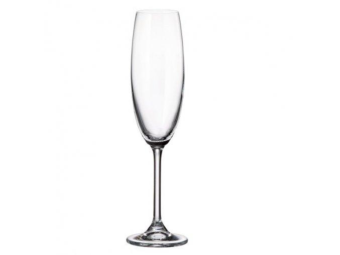 Crystalite Bohemia Sklenice na šumivé víno Gastro 220 ml