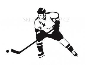 Hokejista pískování motivu