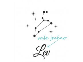 Z008 Lev 1