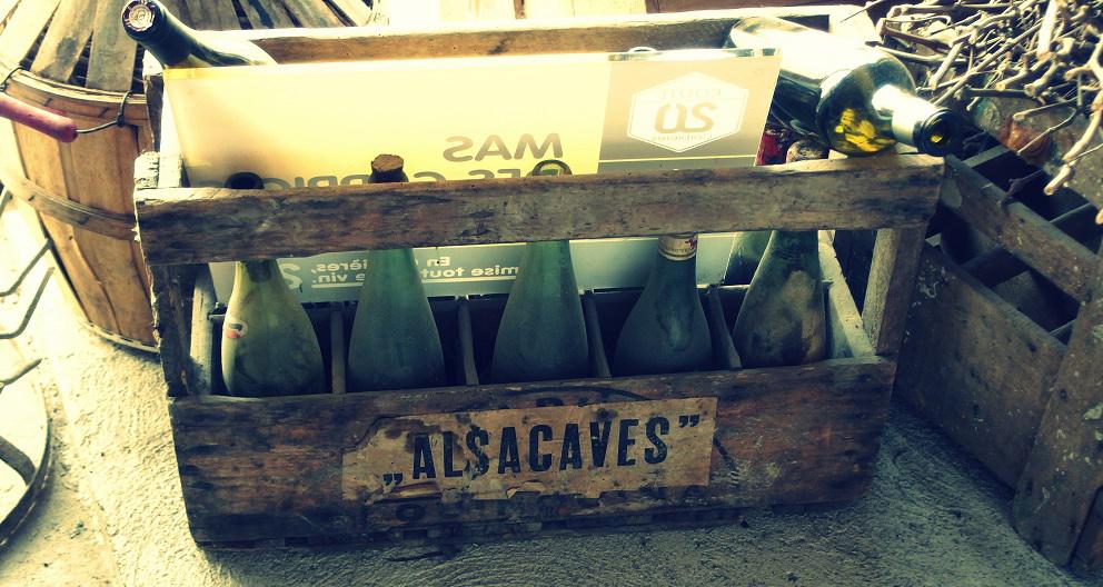 vinice v Poligny