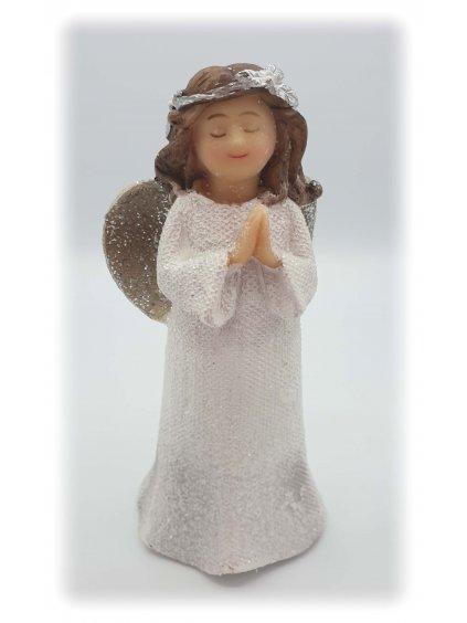11108 2 andel maly modlici se
