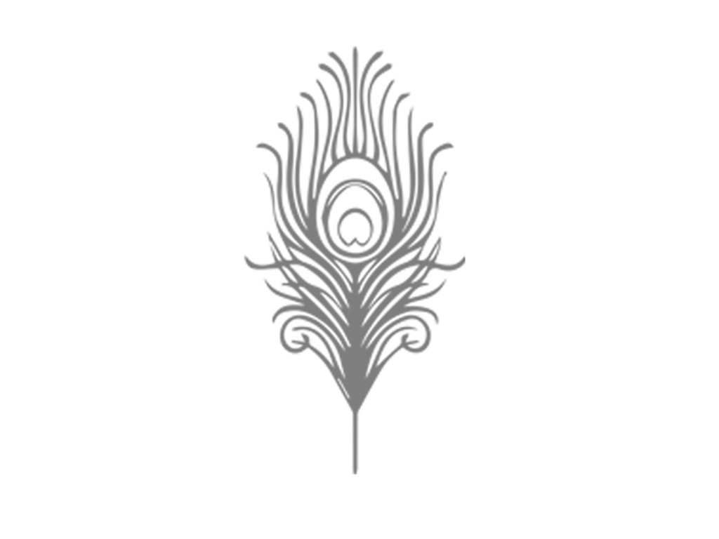 0020 Peacock feather