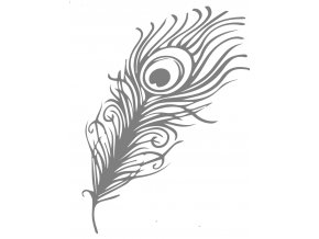 0022 Peacock feather2