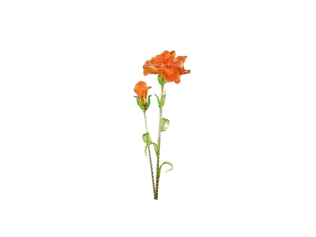 Kytka Oranžový karafiát