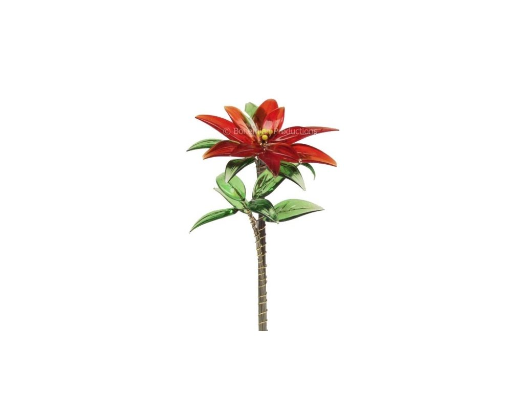 Skleněná kytka  Vánoční hvězda