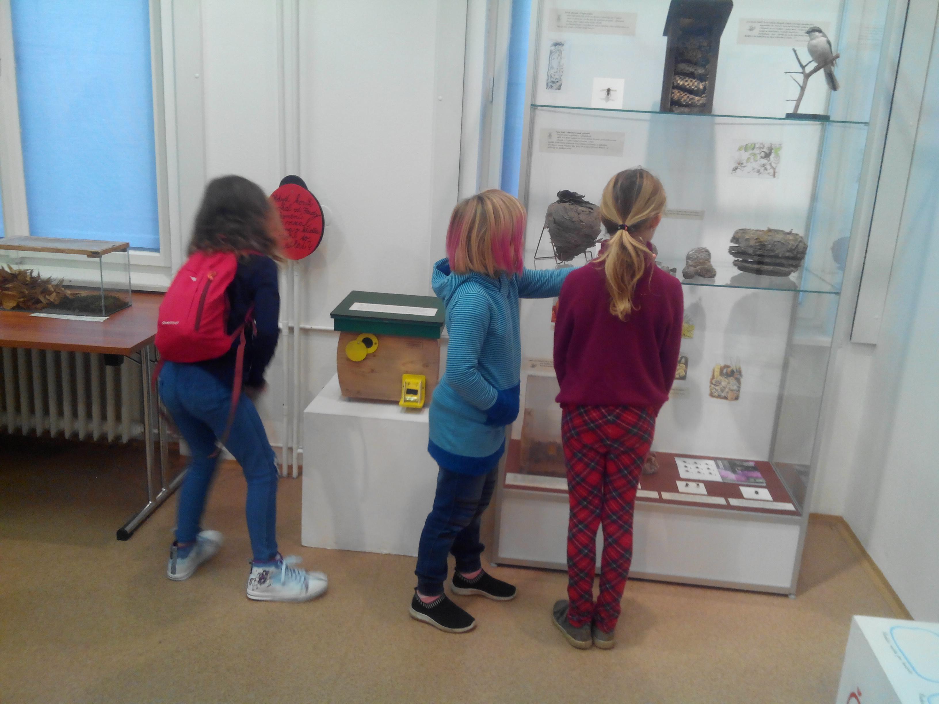 ŠKOLNÍ AKCE - Sládečkově vlastivědném muzeu v Kladně