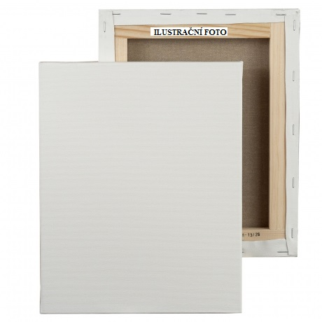 Malířské plátno na rámu 30x80