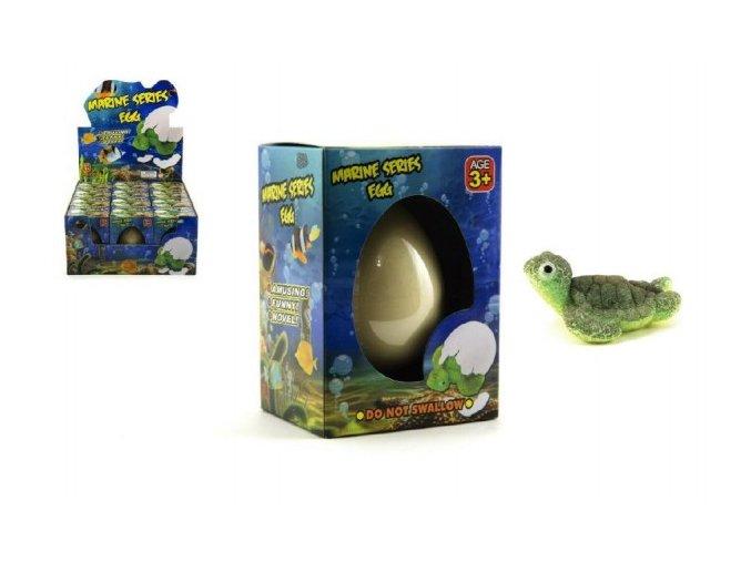 Vejce líhnoucí a rostoucí zvířátko mořský svět 6cm v krabičce 7x10x6cm 12 ks boxu