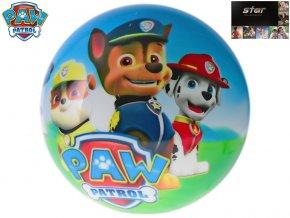 mic 14cm paw patrol 10m