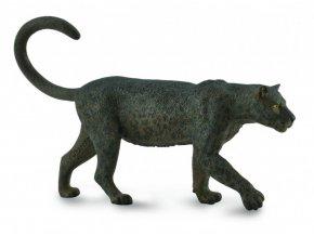 Černý leopard