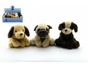 Pes plyš 10cm asst 8 druhů 18 ks v boxu