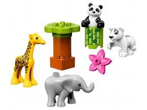 LEGO Duplo Zvířecí mláďátka