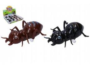 Mravenec na klíček plast 11cm asst 2 barvy (1 ks)