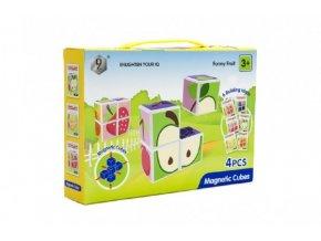 Kostky magnetické ovoce 4 ks plast v krabici 24x17x5cm