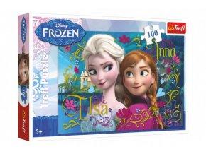 Puzzle Frozen/Ledové království  100 dílků 41x27,8cm v krabici 29x19x4cm