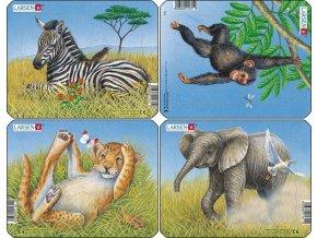 Puzzle Divoká zvířátka - 4ks 9 dílků