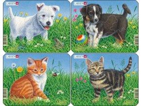 Puzzle Štěňátka + koťátka - 4ks 6 dílků
