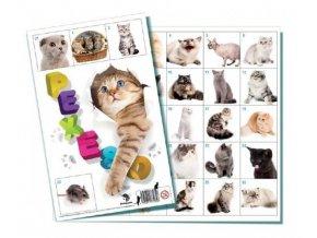 Pexeso Kočky společenská hra 32 obrázkových dvojic skladem
