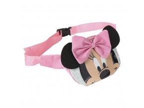 Ledvinka 3D Minnie