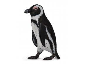 Tučňák skladem