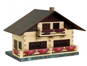 Alpský dům