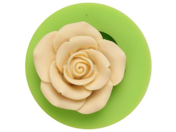 růžička malá