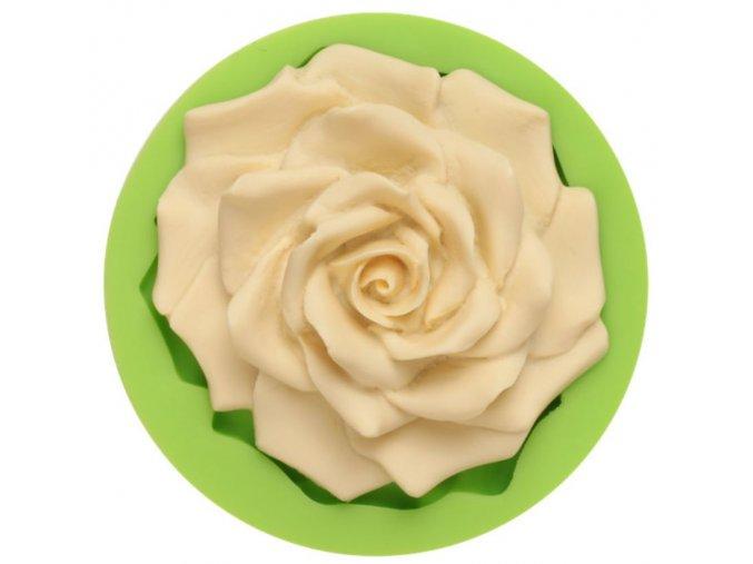 velká růže