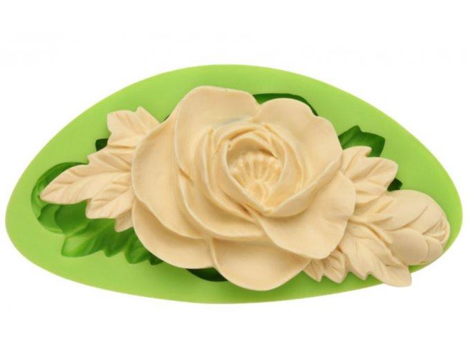 velká růže s listy