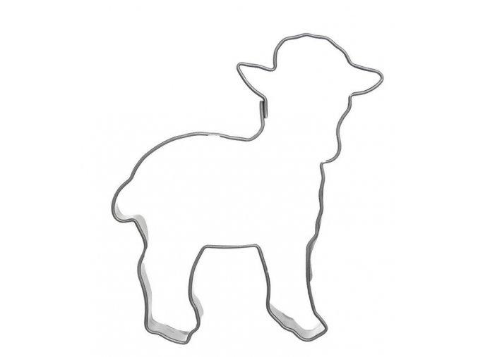 ovečka orion