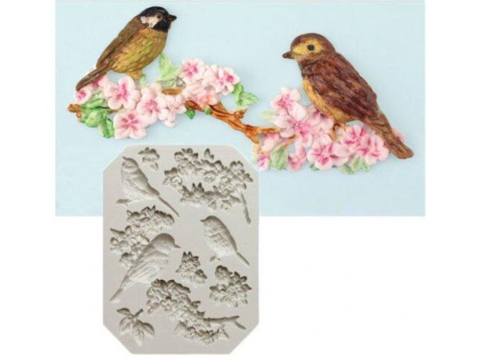 ptáčci na větvičce