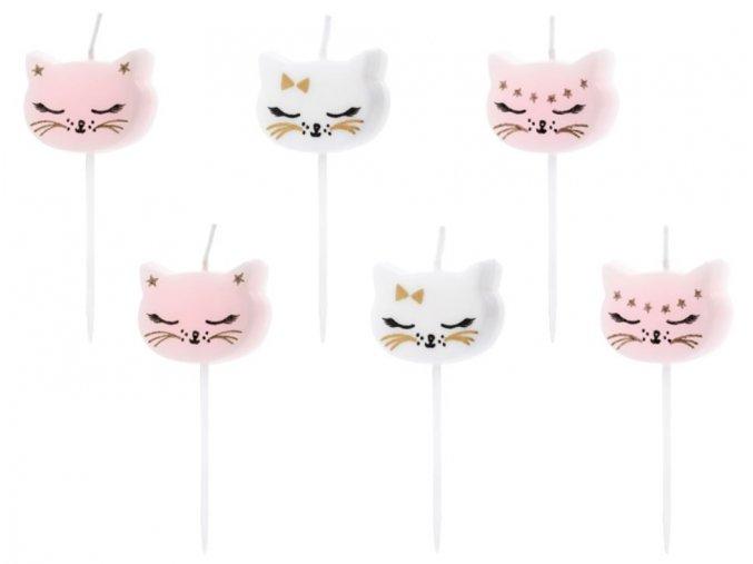 svíčky kočky
