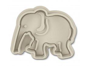 slon stadt