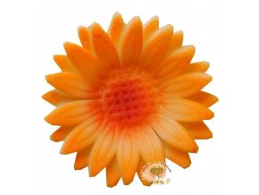 gerbera oranžová