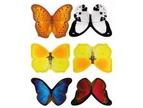 barevní motýli