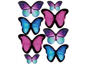 Amazonští motýlci