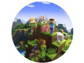 Minecraft 2 kruh 20 cm