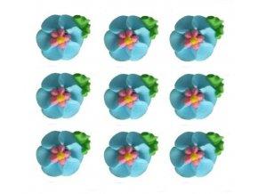 velké modré květy