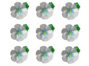 velké bílé květy 2