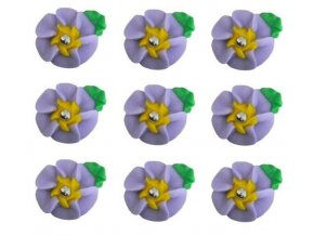 velké fialové květy