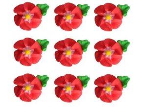 velké červené květy