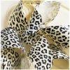 leopard transfer