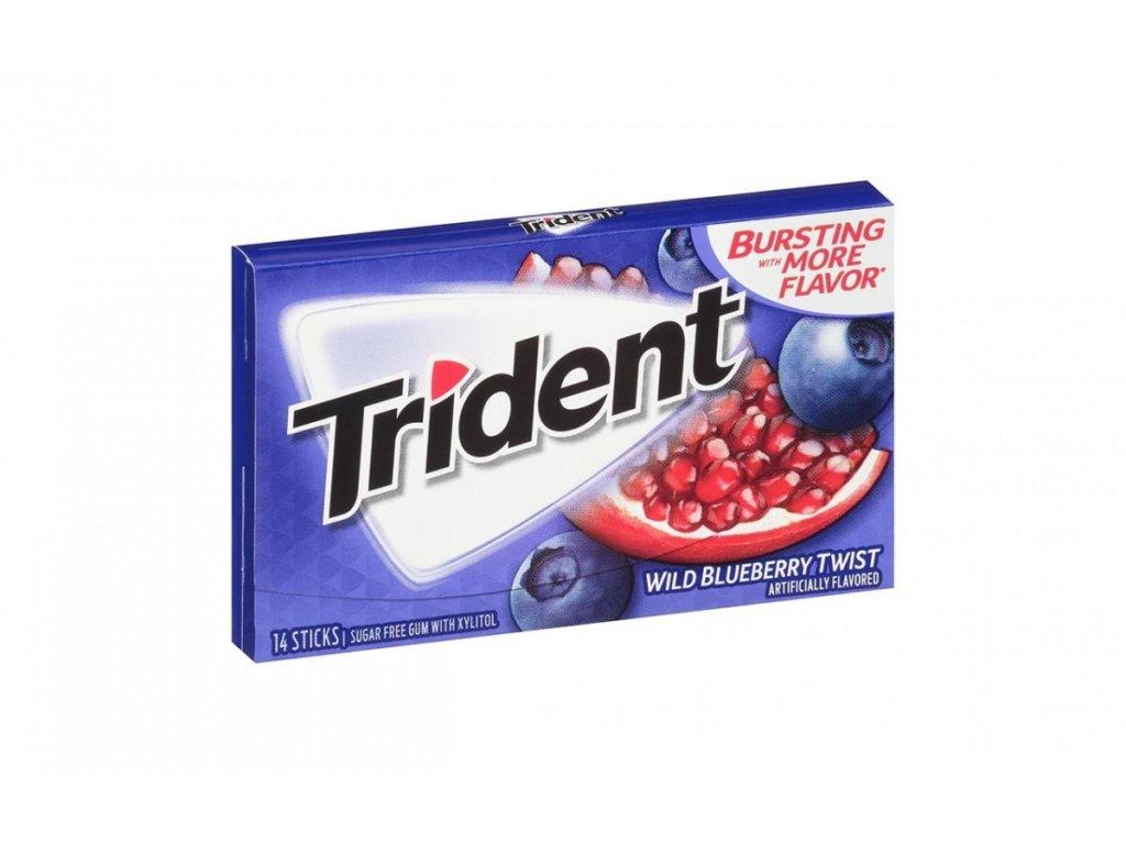 Trident Gum Wild Blueberry 27g
