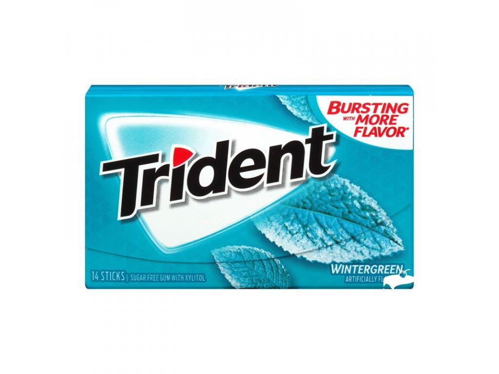 Trident Gum Wintergreen 27g