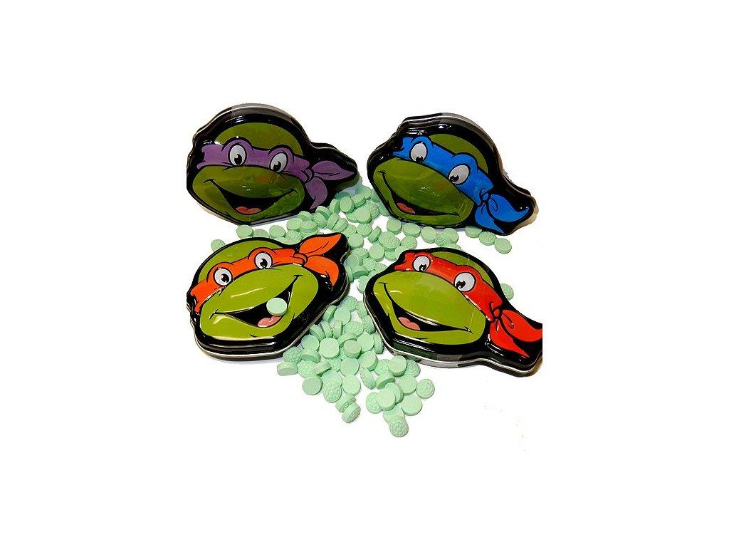 Boston America - Teenage Mutant Ninja Turtles Watermelon Shells 28g