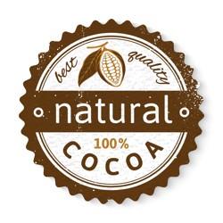 Kakaová hmota Domori 100%
