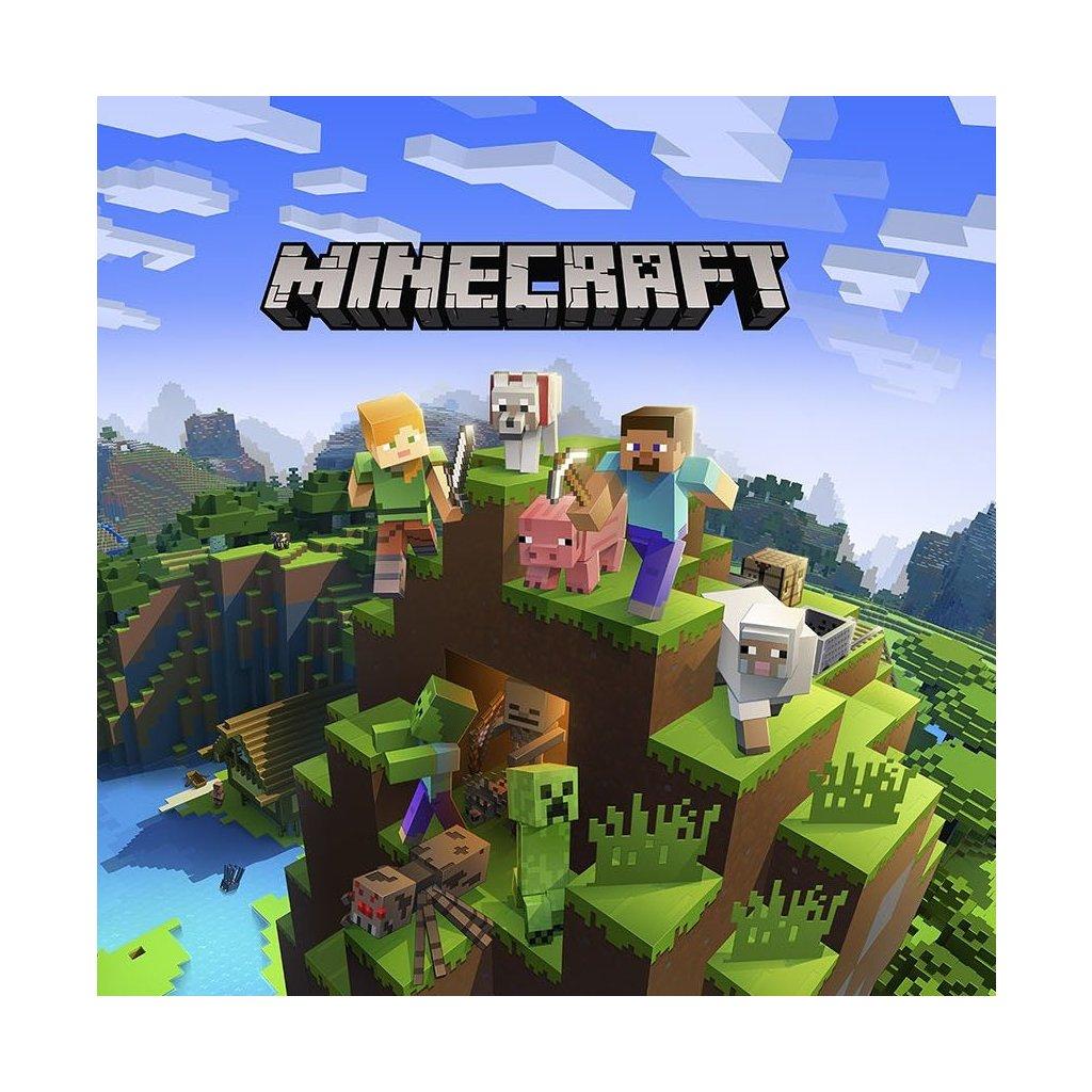 Minecraft kopie