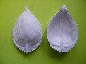 SLEVA 40%! Aldaval žilkovač na květy Peace Lily L (Lopatkovec)