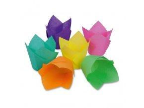 Ozdobná formička - tulipán - Stadter
