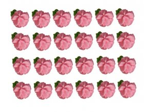 kvetynaplaticku19celkovka