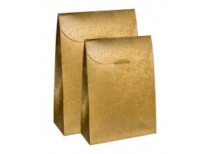 6389 sacek papir 115x55 v 180mm zlaty s kruhy 1 ks sacek